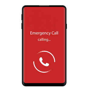 Memory Picture Cell Phone for Seniors with Emergency Services