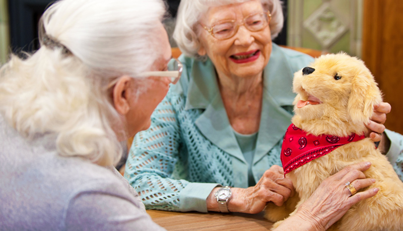 Joy For All Companion Therapy Robotic Pets for Alzheimer's and Seniors w/ Dementia